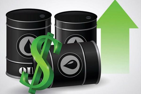 Giá xăng dầu hôm nay 21/11: Tăng cao nhất trong 3 tháng